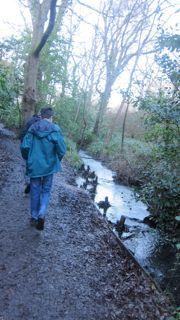 Walking in Hiltingbury.