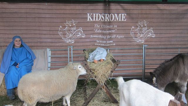 Real barnyard animals in the stable - Winchester Cathedral Christmas Market.