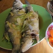 Fish: Wealth, Abundance, Puns
