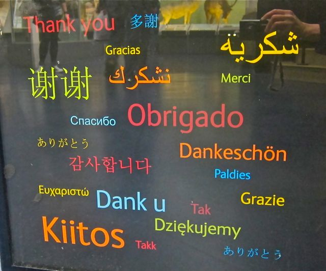 'Thank You' in many languages at Natural History Museum.