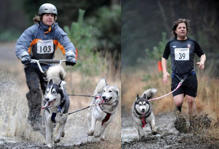 Neil running with huskies.