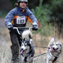 Neil Duddridge: The Man Behind Chandler's Ford Today (With Huskies)