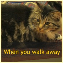When You Walk Away