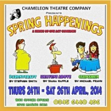 Spring Happenings By The Chameleons