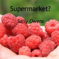 Supermarkets? Raspberries image. Poem by Sally Owens.