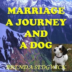 Marriage and Journey and a Dog cover