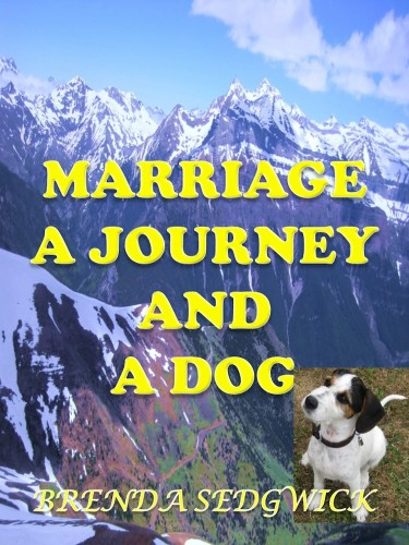 Brenda Sedgwick's Novel: Marriage A Journey And A Dog