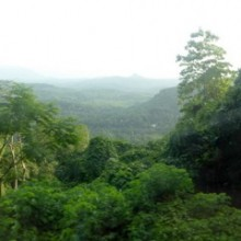 Dawn Train Down The Mountain To Colombo