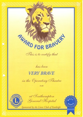 Eastleigh Lions Bravery Certificate