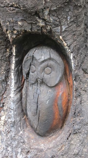 Hocombe Mead vandalism: the carved owl has been burnt and damaged.