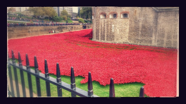 888,246 ceramic poppies progressively filled the Tower's famous moat between 17 July and 11 November 2014.