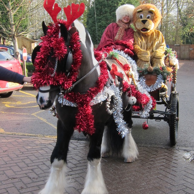 A fun-filled opening of the Santa's Grotto at Brambridge Park last weekend. Picturing Kerie Couttes – Founder of Hampshire Riding Therapy Centre,  Joe the horse, and the lion from the Lions Club of Eastleigh.