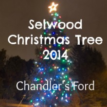 Selwood: Spectacular Christmas Tree in Chandler's Ford 2014