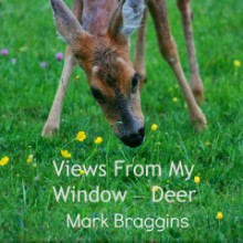 deer eating buttercups. Views From My Window by Mark Braggins - deer.