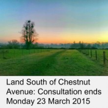 Land South of Chestnut Avenue: Consultation Ends Monday 23 March 2015