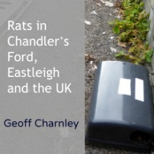 Rats in Chandler's Ford, Eastleigh and the UK