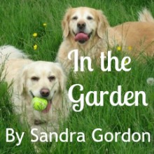 Sandra Gordon's Poem: In The Garden