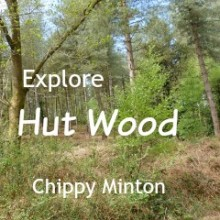 Explore Hut Wood off Chilworth