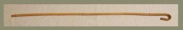 Rattan cane - original image by Neitram via Wikimedia.