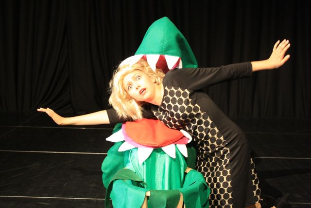 What happened to Audrey? Little Shop of Horrors. Toynbee School, Chandler's Ford.
