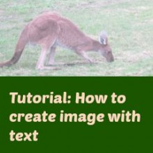 Easy Steps to Create Images with Text Using PicMonkey