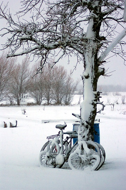 bicycle winter
