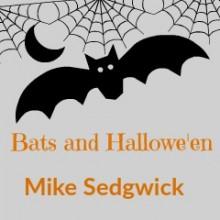 Bats and Hallowe'en
