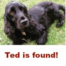 Ted is Found!