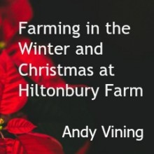 Farming in the Winter and Christmas at Hiltonbury Farm