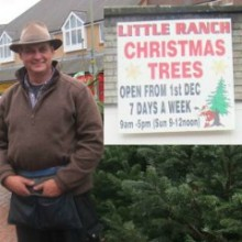 Little Ranch Farm Christmas Trees at Fryern Arcade 2015