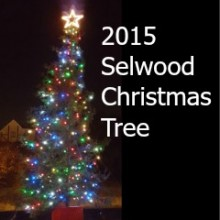 Selwood Christmas Tree in Chandler's Ford 2015