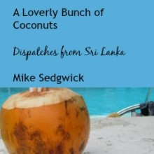 Dispatches from Sri Lanka: a Loverly Bunch of Coconuts