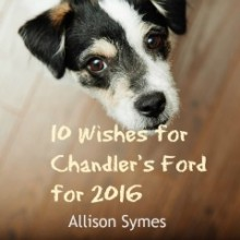 10 Wishes for Chandler's Ford for 2016