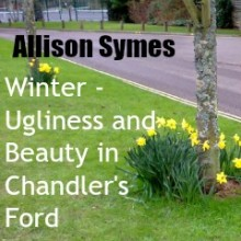 Winter – Ugliness and Beauty in Chandler's Ford