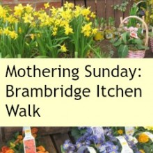 Mothering Sunday: Brambridge Garden Centre and Itchen Walk