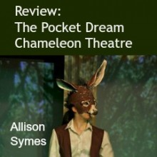 Review: The Pocket Dream by Chameleon Theatre Company