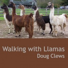 Walking with Llamas – By Doug Clews