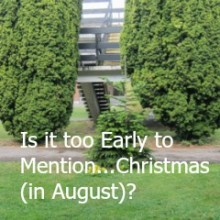 Is it too Early to Mention…Christmas (in August)?