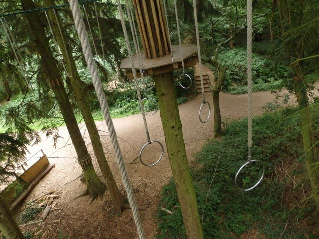 Go Ape Challenge. Image by Chippy Minton.