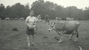 Hez with Hiltonbury Herd (1960s)
