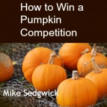 How to Win a Pumpkin Competition