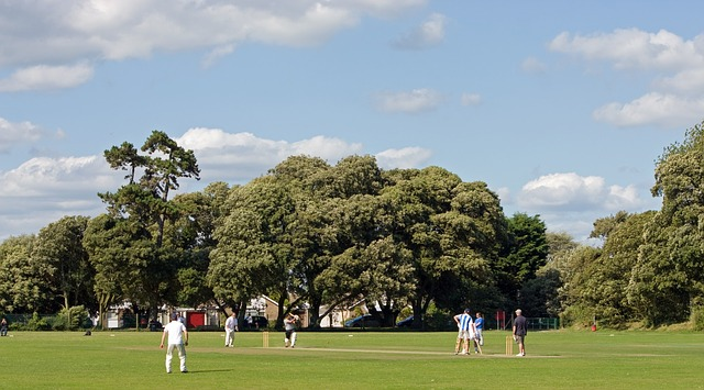 Cricket match. Image via Pixabay
