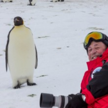 Roger Clark's Quest to Antarctica to Photograph the Right Penguins