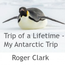 Trip of a Lifetime – My Antarctic Trip