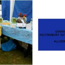 Overview of Hiltingbury Extravaganza 2017