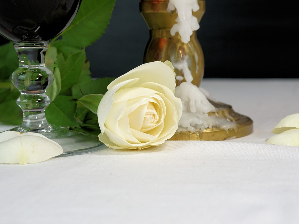 Ricardians prefer their roses white for York - image via Pixabay