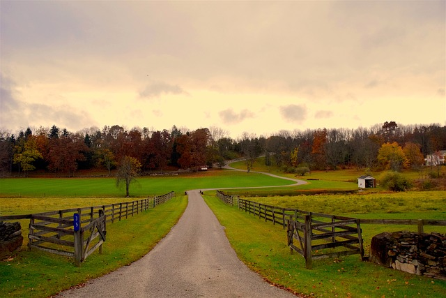 Rural Estate Management covers some of the loveliest countryside - image via Pixabay