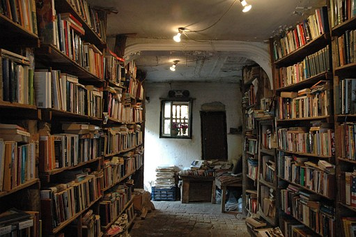 Where every author wants their book to be - in a bookshop - image via Pixabay