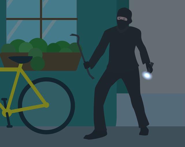 burglaries image