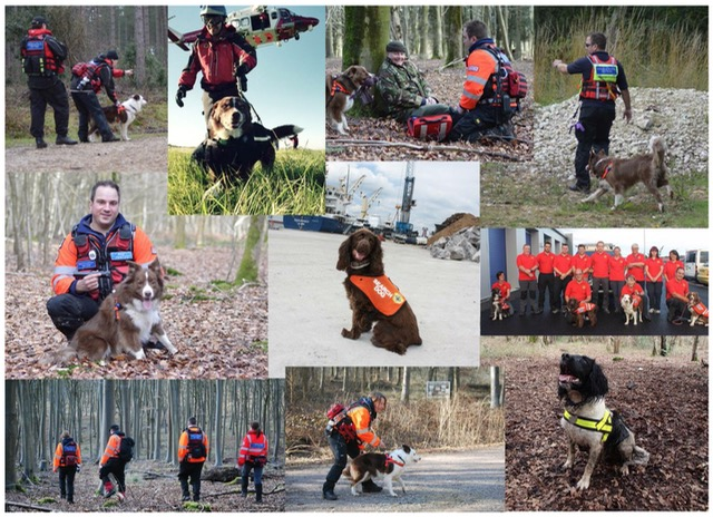 Hampshire Search & Rescue Dogs - HSAR Dogs.